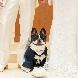 BATUR TOKYO(バトゥール トーキョー):【無料特典付】イチからわかる&オリジナルウエディング相談会