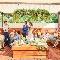 musee yotsuike (ミュゼ四ツ池):【リニューアルOPEN記念★】グランピングウエディング体験フェア
