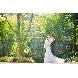 STONE FOREST(ストーンフォレスト)のフェア画像