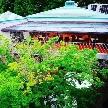"STONE FOREST(ストーンフォレスト):【火曜日限定】""森の中での結婚式""!貸切見学&じっくり相談会♪"