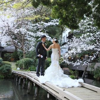浮月楼:【桜ウエディングが叶う!】駅前の日本庭園で本格和婚!