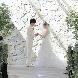 スタイリッシュウェディング ヴィーナスコート 佐久平のフェア画像