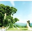 星野リゾート トマム・水の教会:【表参道サロン】北海道Wがわかる!水の教会&氷の教会フェア