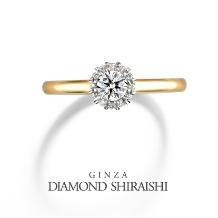 銀座ダイヤモンドシライシのイメージ1711990