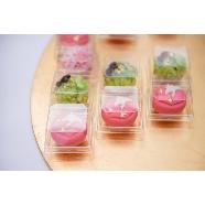 東山山荘:【月2回限定】和菓子&お抹茶付 ほっこり見学フェア