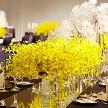 ウェスティンホテル東京:【少人数の家族婚!】ザ・テラス人気スイーツ試食付フェア