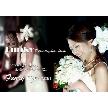 CafeBar Funky ~ 新横浜 結婚式 二次会 ~:しあわせの 門出を サポートします。