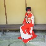 和装、白無垢、色打掛、黒引:maruichi(マルイチ)