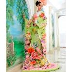 和装、白無垢、色打掛、黒引:Wedding Costume HIROTA●HIROTAグループ