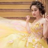Wedding Costume HIROTA●HIROTAグループ:5月末入荷予定 THE HANYパピオン■蝶が舞う大人フェミニンカラードレス