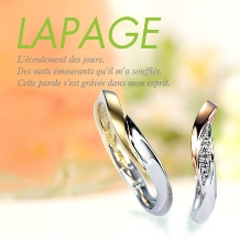 ELEGANCE(エレガンス):【LAPAGE-ラパージュ-マリーゴールド】花言葉 信頼 可憐な愛情