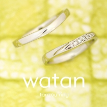 ELEGANCE(エレガンス):【watan-和鍛-】紬 つむぎ