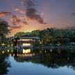 GARDEN RESTAURANT TOKUGAWAEN(ガーデンレストラン徳川園):【お仕事帰りに立ち寄って】庭園貸切ナイトウエディング相談会