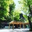 軽井沢クリークガーデン:チャペルで大迫力の景色を体験!120分見学会