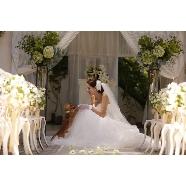 ヒルサイドガーデン・山手フランス山教会:☆ペットも大切な家族!☆ 愛犬ウェディング相談会