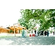 阿佐ヶ谷神明宮のフェア画像