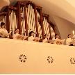 ローズガーデンクライスト教会:【挙式体感!】現地開催☆ミニコンサート付きフェア