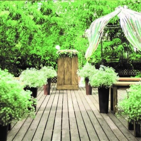 エレガンテヴィータ:直前予約OK!最大級BIG特典&試食付!緑あふれる屋上ガーデンW