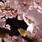 東京装苑(とうきょうそうえん):和装専門店 ハウススタジオ撮影がアルバム+データ 58,000円
