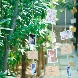ORIENTAL KYOTO SUZAKU-TEI 朱雀邸のフェア画像