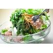 CORONA(コローナ):サラダ類は主にオーガニック野菜を使用。(※写真はディナー時の料理イメージです)