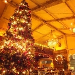 ブラッスリーカフェ ルコンテ(Le Conte):Xmasには4メートルも超える大きなツリーとともに