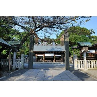 憧れの和婚♡伊勢山皇大神宮で神前式×アフターパーティー相談会