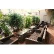 Blue Garden(ブルーガーデン):フルオープンにできるテラス席が大人気!