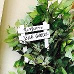 Blue Garden(ブルーガーデン):