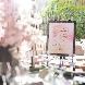 クラシカ表参道のフェア画像