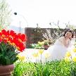 びわ湖大津館 ガーデンウエディング:★湖畔の緑あふれるガーデン撮影★ロケーションフォト相談会