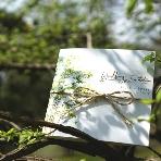 結婚式招待状:WEBDING日本橋店●花雲グループ