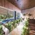 THE TENDER HOUSE(ザ テンダーハウス):満席間近【豪華試食付】緑・水・木に包まれた挙式体験×邸宅見学