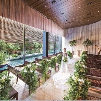 THE TENDER HOUSE(ザ テンダーハウス):【最大125万特典】豪華コ-ス試食×デザイナーズチャペル挙式