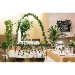 ELLE HALL Dining(エルホールダイニング):流行りの緑が基調の装飾☆