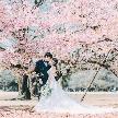 大國魂神社 結婚式場:1日で叶う【神社結婚式+Wドレスでフォトツアー】プラン相談会