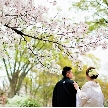 大阪城西の丸庭園 大阪迎賓館:◆月曜限定◆庭園&迎賓館ALL貸切見学×豪華フレンチ5品無料試食