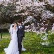 THE GRASS HOUSE 桜の杜:直前予約OK【3/21限定】\桜の開花分だけ特典有/桜祭りフェア