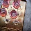 THE GRASS HOUSE 桜の杜:【夜桜がオススメ】旬の味覚グルメ&飲み放題フェア