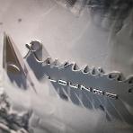 Runway(ランウェイ):ここから幻想的な会場へ
