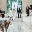 キンプトン新宿東京:◆大切な家族と過ごすペットフレンドリーwedding相談会◆