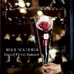 プチギフト:MAX MATERIA(マックスマテリア)