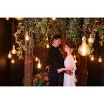 Studio Wedding(スタジオ結婚式):【ドレス2着でスタジオプラン】200カット/洋装2着