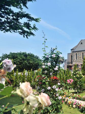 ホテルサンライフガーデン/グランドビクトリア湘南 チャペル(スコットランドから移築した本物教会)画像1-1