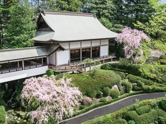 ロイヤルガーデンパレス 柏 日本閣 神社(出雲大社 千葉湖上殿)画像2-1
