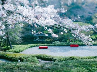 八芳園 庭園1画像2-1