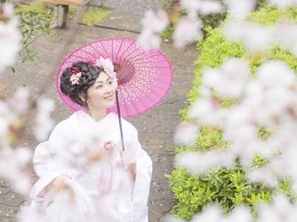 大井神社 宮美殿 撮影スポット画像1-4