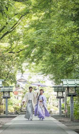 大井神社 宮美殿 庭園画像1-1