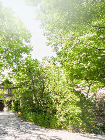 ザ ソウドウ ヒガシヤマ キョウト(THE SODOH HIGASHIYAMA KYOTO) 1700坪の広大な邸宅がおもてなしの舞台画像1-2