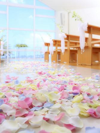 和歌山マリーナシティホテル チャペル(海の見えるチャペル)画像2-2
